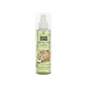 Herbe à chat en spray