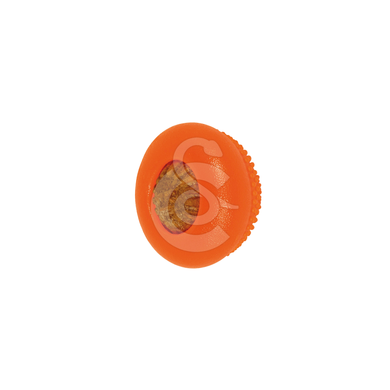 Jouet chien Starmark : Everlasting Bento Ball
