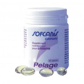 Sofcanis Pelage