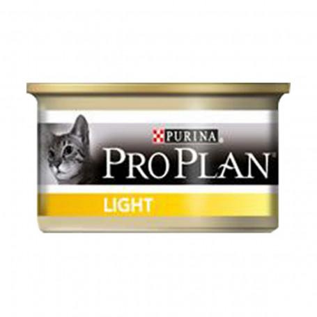 Cat Light Turkey Boîte