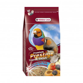 Premium Oiseaux Exotiques