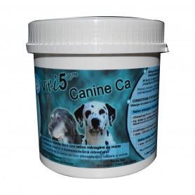 Vit'I5 Canine Ca