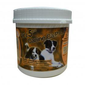Vit'I5 Canine Ca:P 3