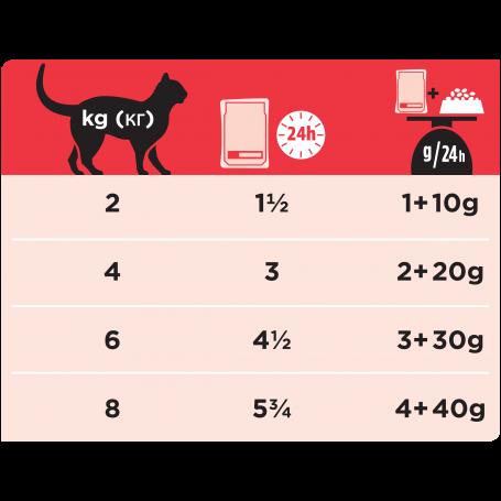 Ppvd Feline DM Stox Diabetes Beef sachet repas
