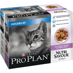 Cat Housecat Turkey Gelée sachet repas