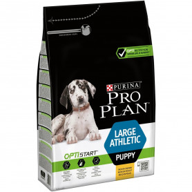 Dog Large Athletic Puppy Chicken Optistart