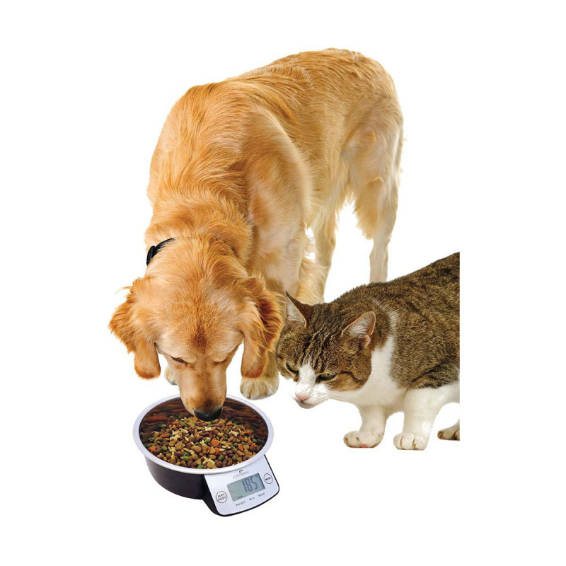 Gamelle intelligente Pet Bowl