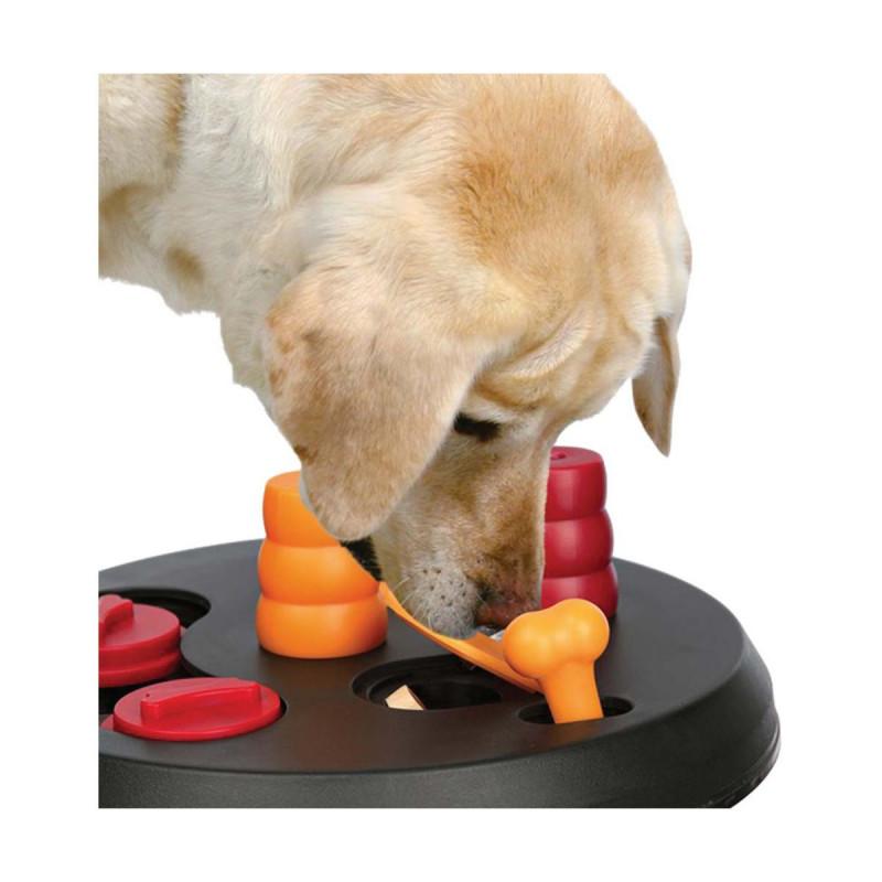 Jouet chien éducatif : Flip Board