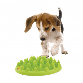 Gamelle Green Slow Dog pour chien