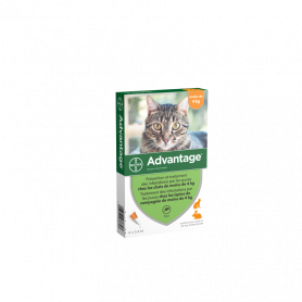 Advantage 40 Chat/Lapin de moins de 4 kg