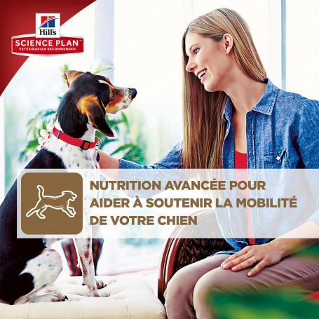 Canine Adult Medium Healthy Mobility