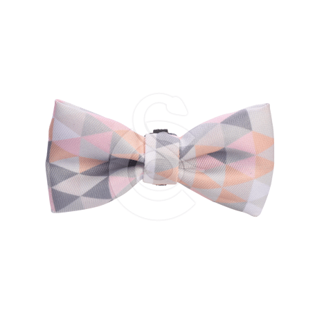 Noeud papillon Bobby Prism