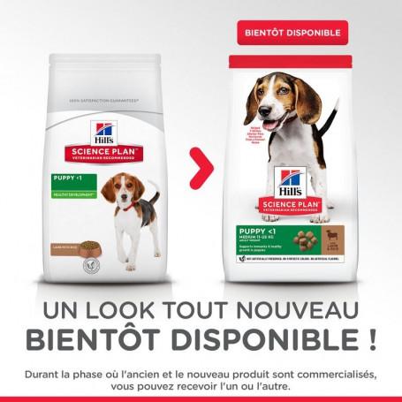 Puppy Agneau & Riz Healthy Development