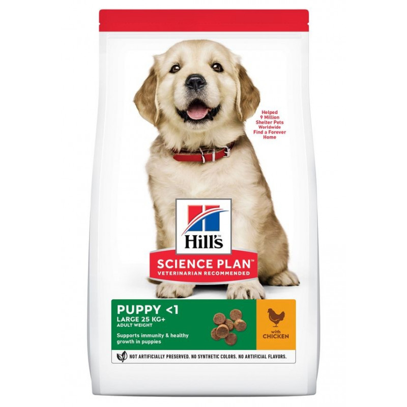 Puppy Large Poulet Healthy Development Value Pack