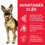 Canine Mature Adult 6+ Large Breed Poulet