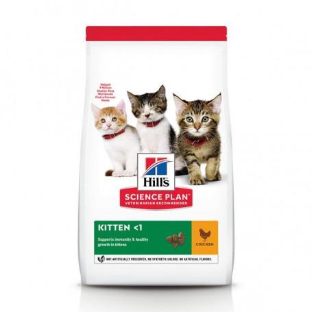 Feline Kitten Poulet
