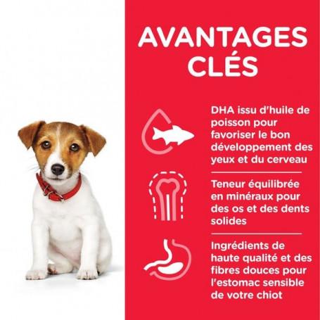 Puppy Mini Poulet Healthy Development