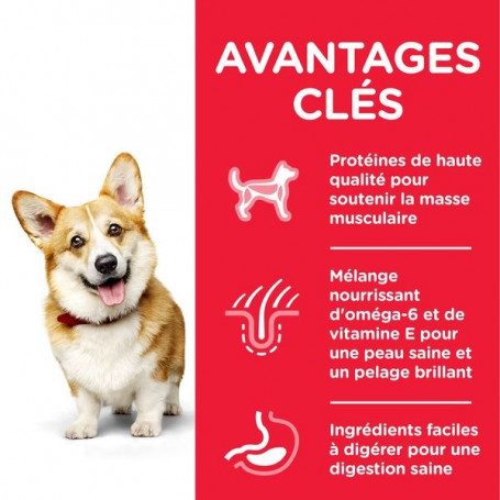 Canine Adult Mini Poulet Advanced Fitness