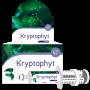 Kryptophyt