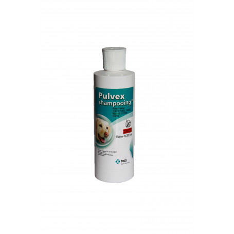 Pulvex Shampoing insecticide