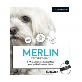 Merlin Collier petit/moyen Chien